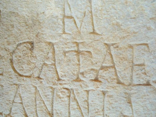 katie in latin